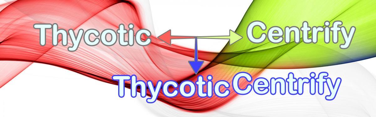 Aus Thycotic und Centrify wird vorläufig ThycoticCentrify